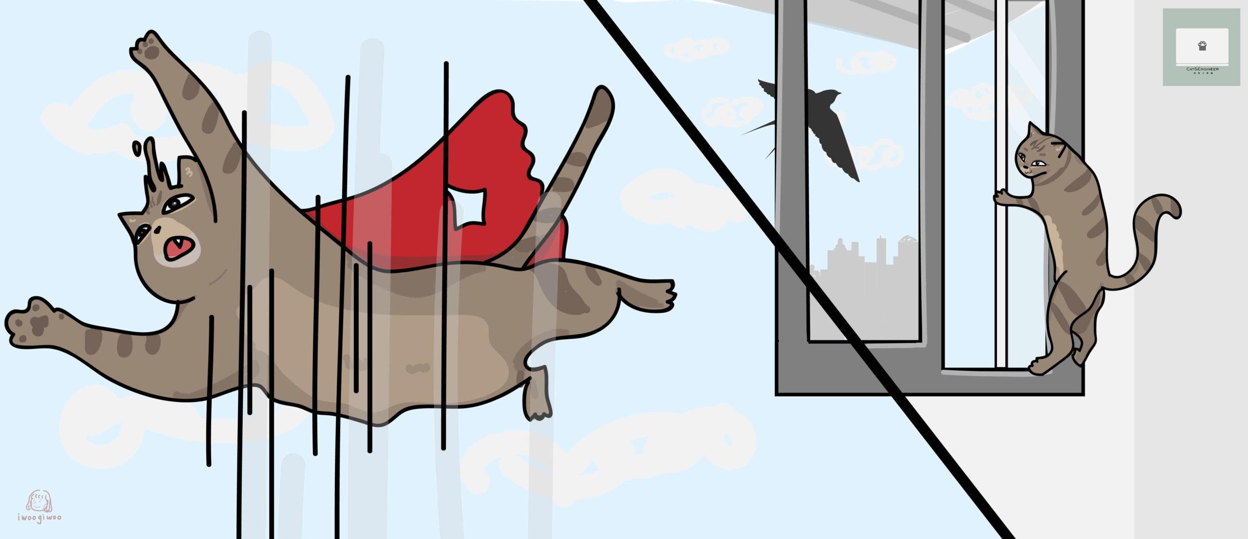 貓咪開紗窗跳樓