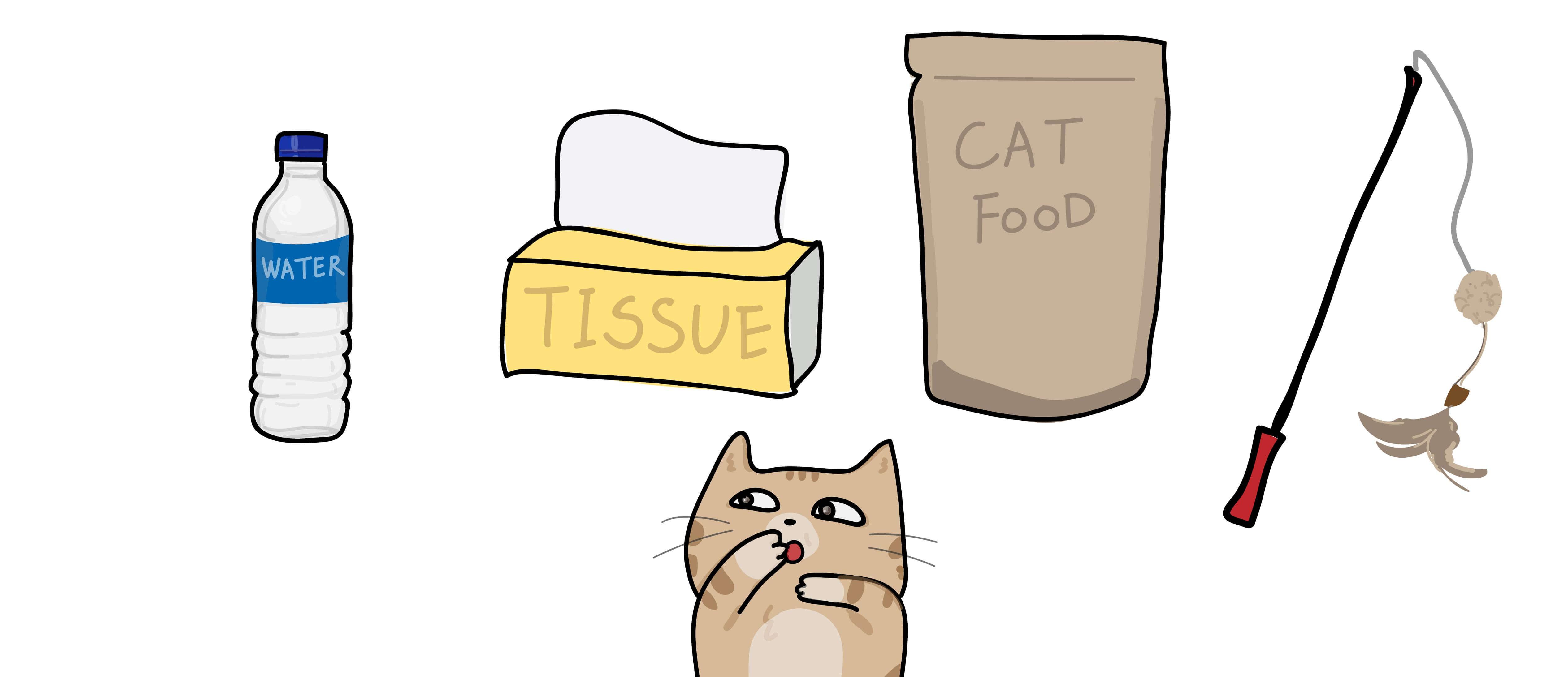 遛貓必需品