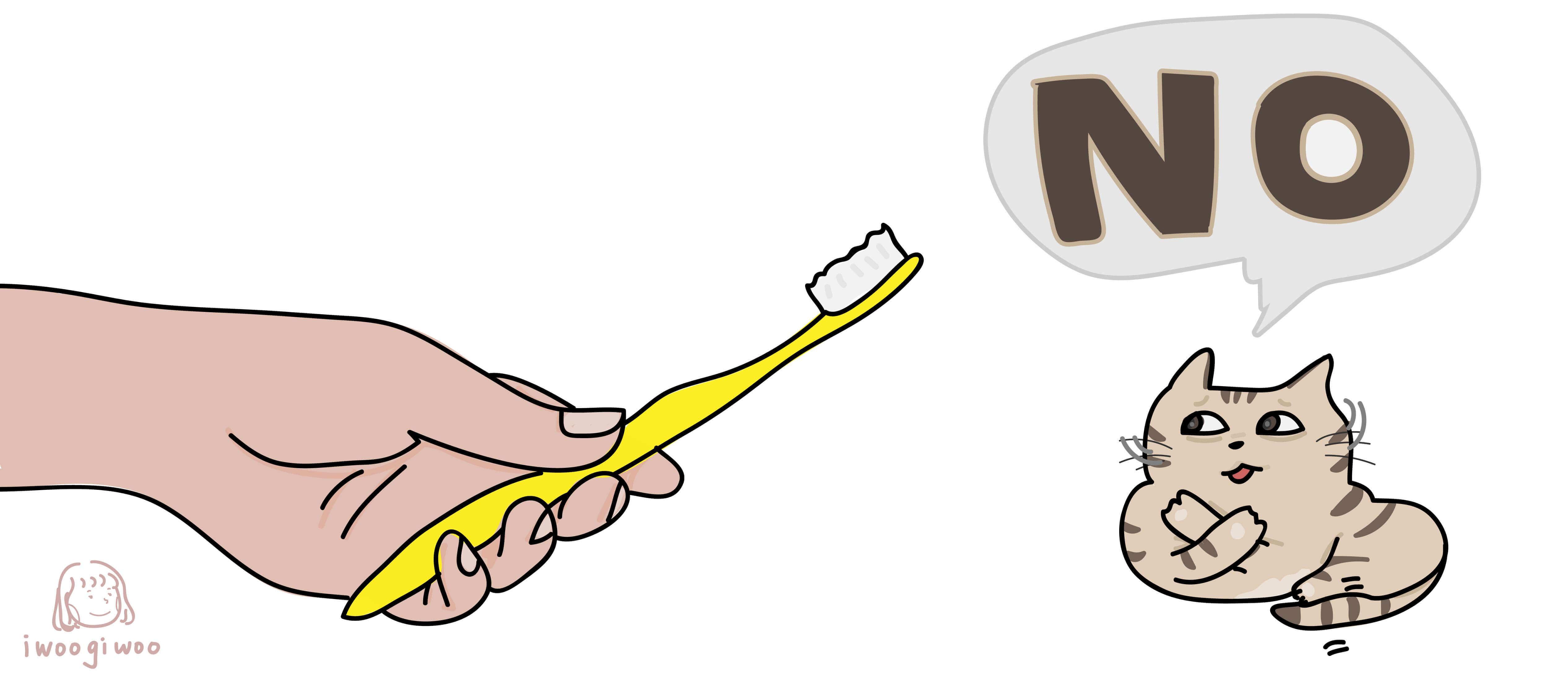 貓咪抗拒刷牙怎麼辦
