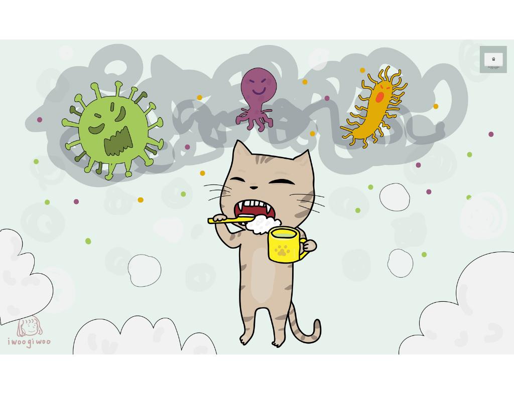怎麼幫貓咪刷牙