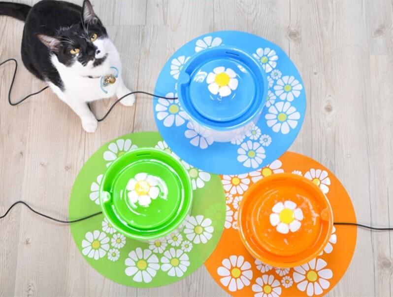 貓咪飲水機-花朵噴泉飲水機 購買網站