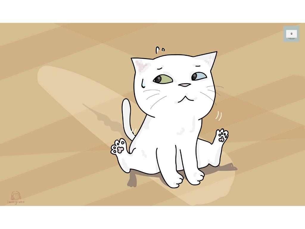 你的貓咪會磨屁股在地板上嗎?5個分析告訴你有異常!