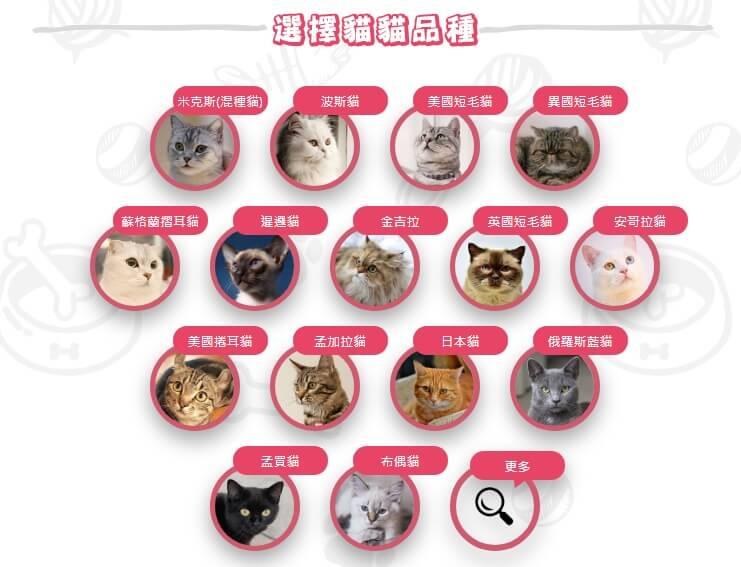 動物保險註冊步驟4