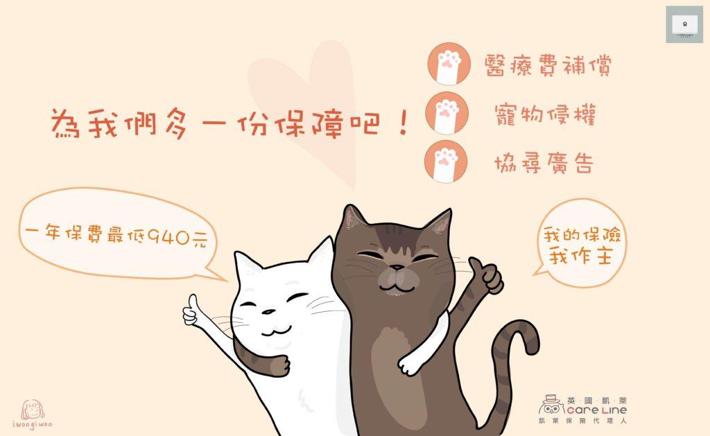 擔心貓的醫藥費很貴怎麼辦?英國凱萊寵物險幫你解決這個問題!