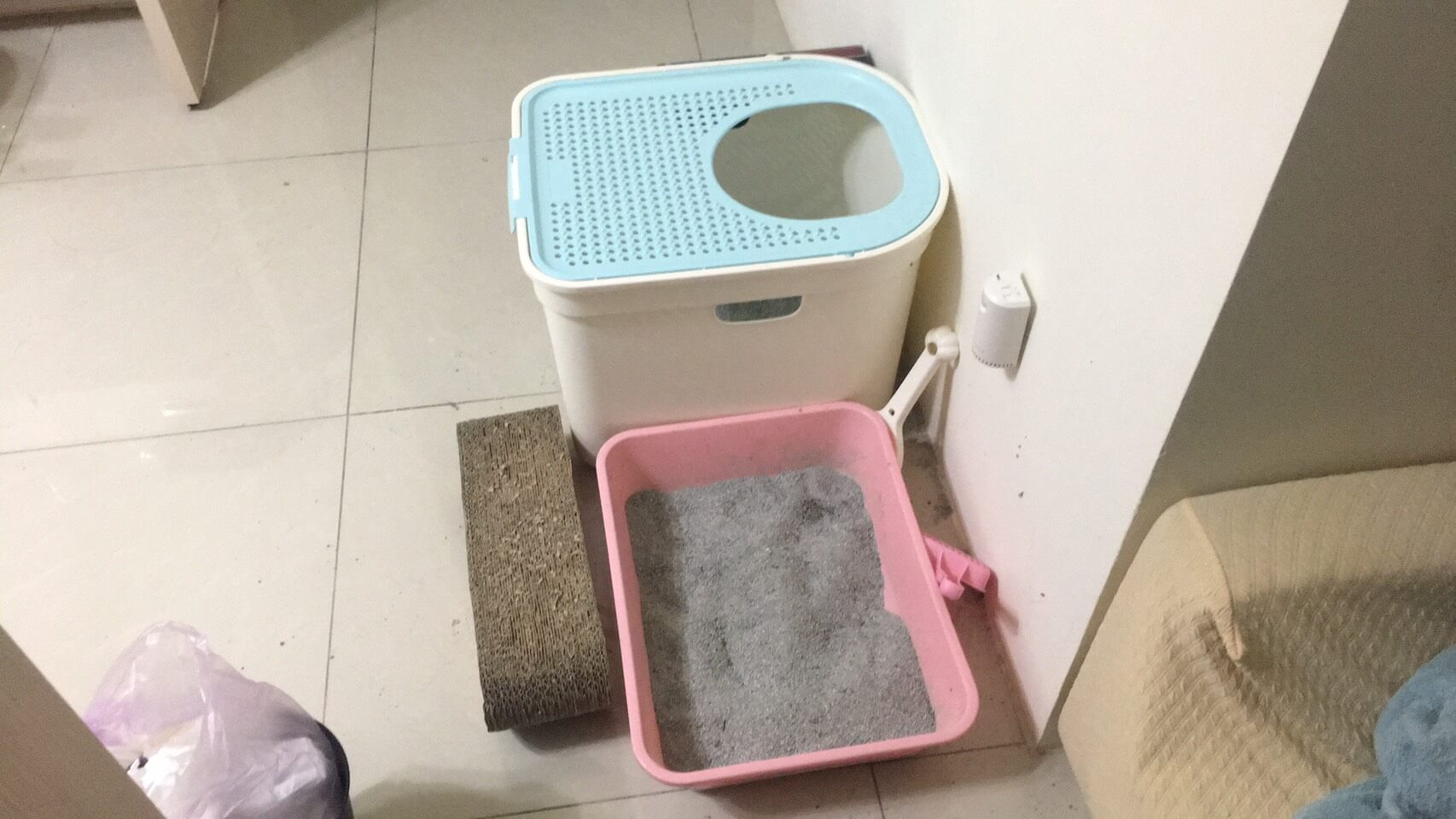 貓癬清潔環境
