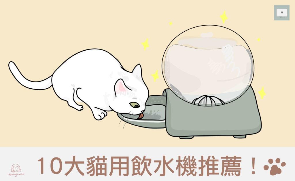 【2021年最新版】10大貓用飲水機推薦!促進貓咪對於喝水的興趣!