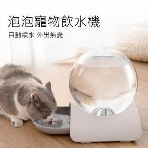 10大貓用飲水機推薦3