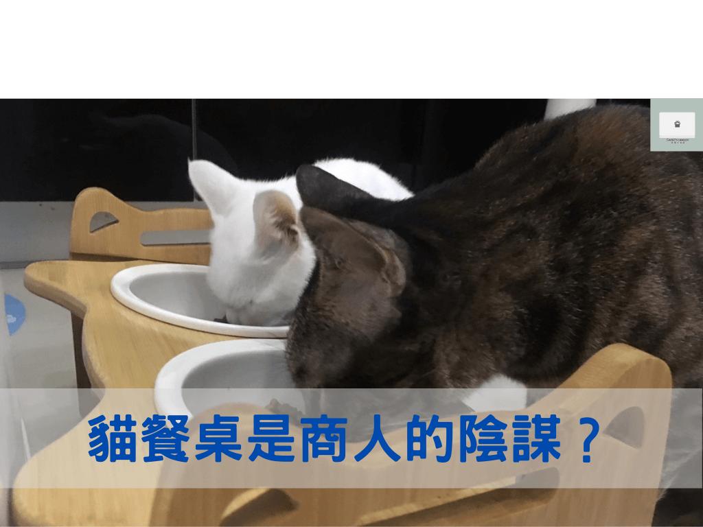貓餐桌使用不當,會造成貓咪頸椎出問題?