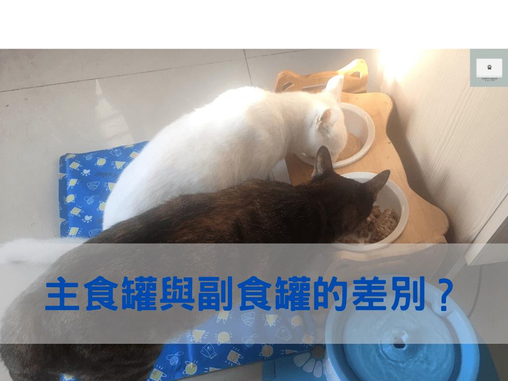 貓用主食罐與副食罐的差別在哪?用4點快速分辨!