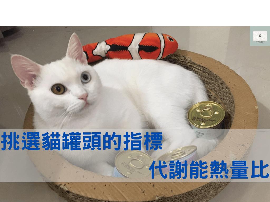貓罐頭怎麼挑?利用代謝能熱量比來計算營養會更準確!