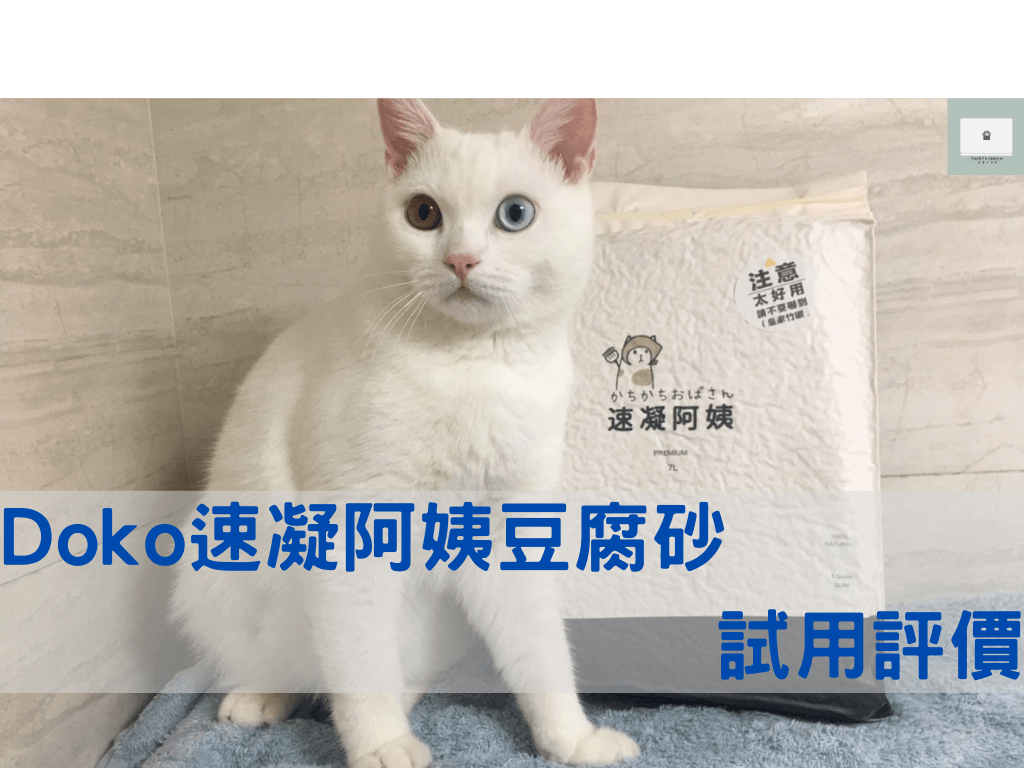 貓砂推薦-速凝阿姨豆腐砂評價