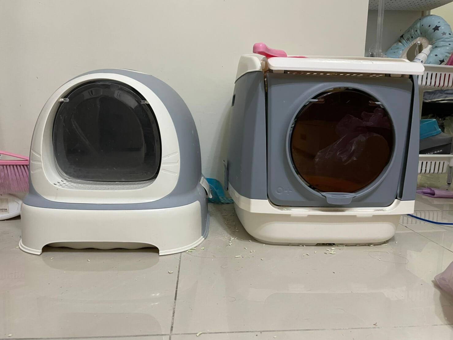 預防貓黴菌1環境清潔