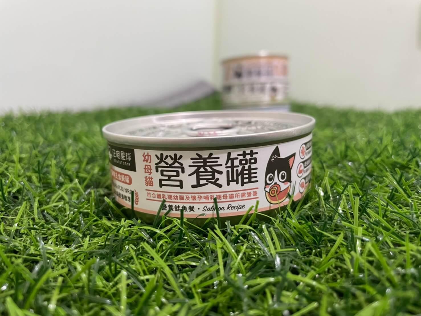 汪貓星球幼貓罐 營養鮭魚