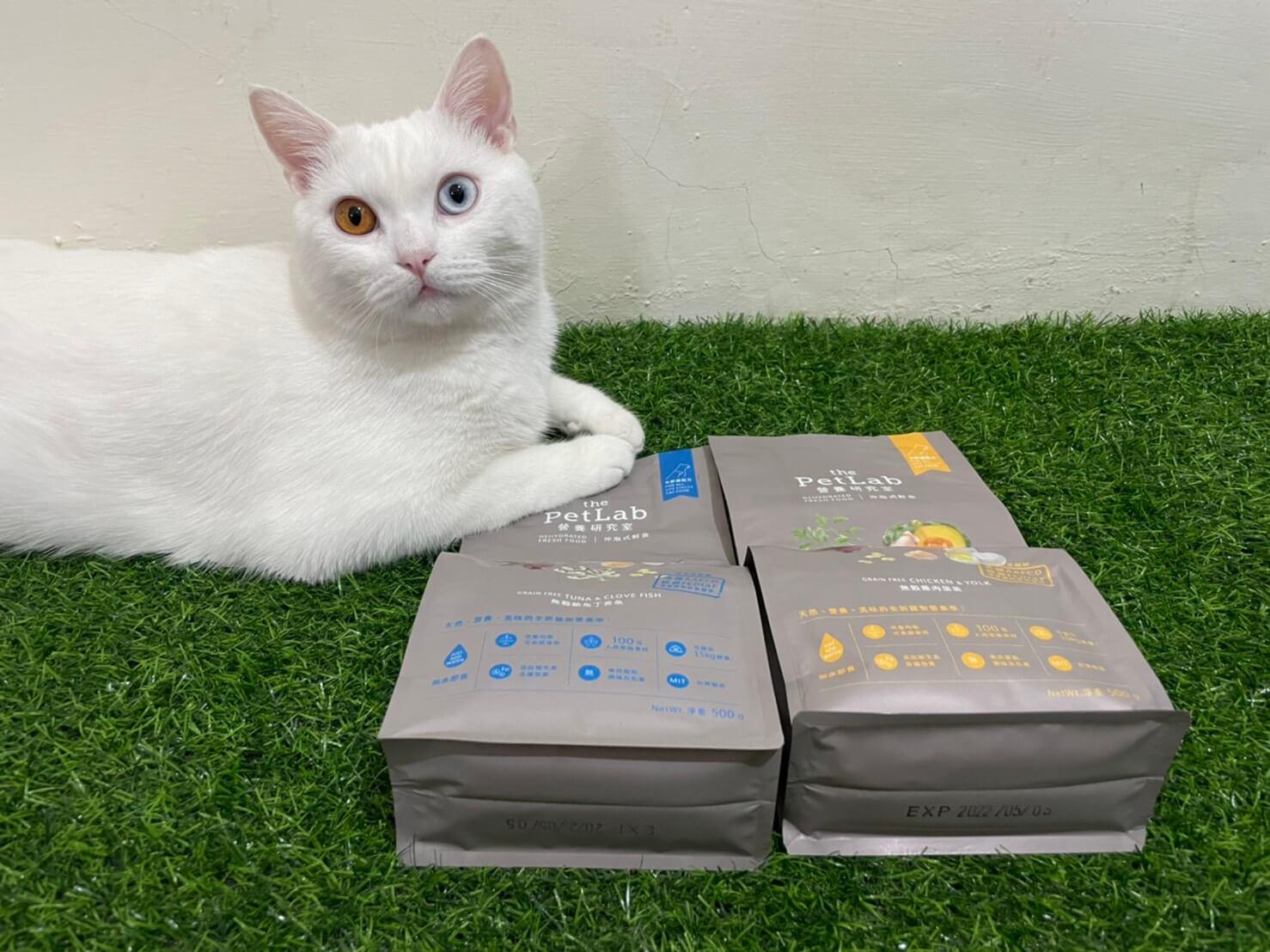貓咪沖泡式鮮食5