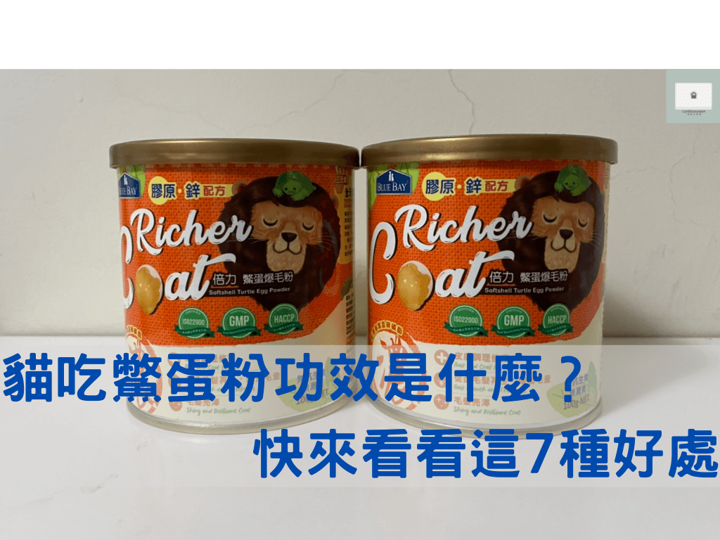 【鱉蛋爆毛粉推薦】與功效是什麼?貓吃鱉蛋粉有什麼好處?寵物保健好物分享!